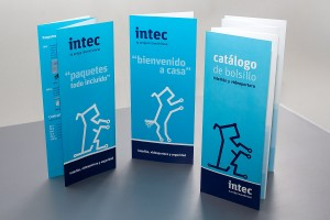 Identidad Corporativa de Intec. Un proyecto de ideograma. Trípticos.