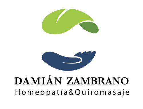 Damián Zambrano – Marca Corporativa